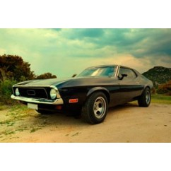 Old mustang